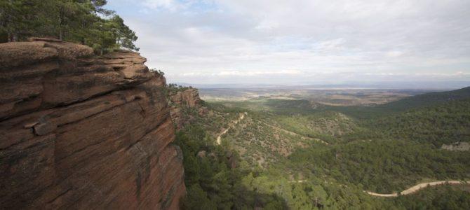 Randonnée dans les Pinares de Rodeno